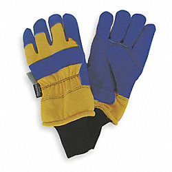 Cold Protection Gloves,L,Blue/Yellow,PR